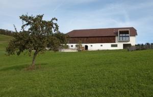 bauernhaus_kirchschlag_anytime_architekten_foto_juergenhaller3